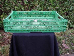 cassetta pieghevole in plastica verde