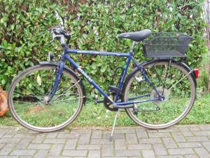 bicicletta uomo blu