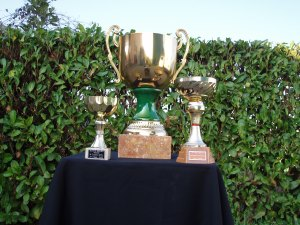 coppe e trofei vari