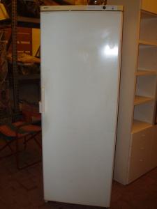 maxi frigorifero bosch