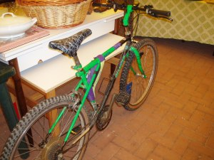 mountain bike verde della bianchi