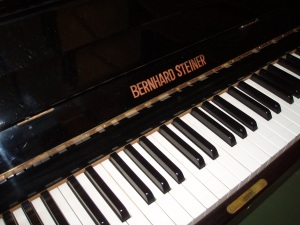 tastiera pianoforte steiner